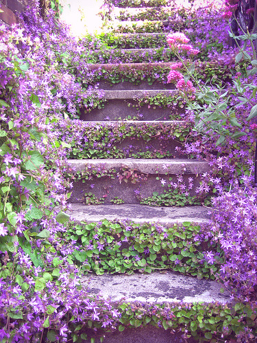pinterest stairs